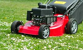Tonte et entretien de pelouse