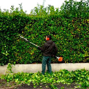 avantage fiscal jardin