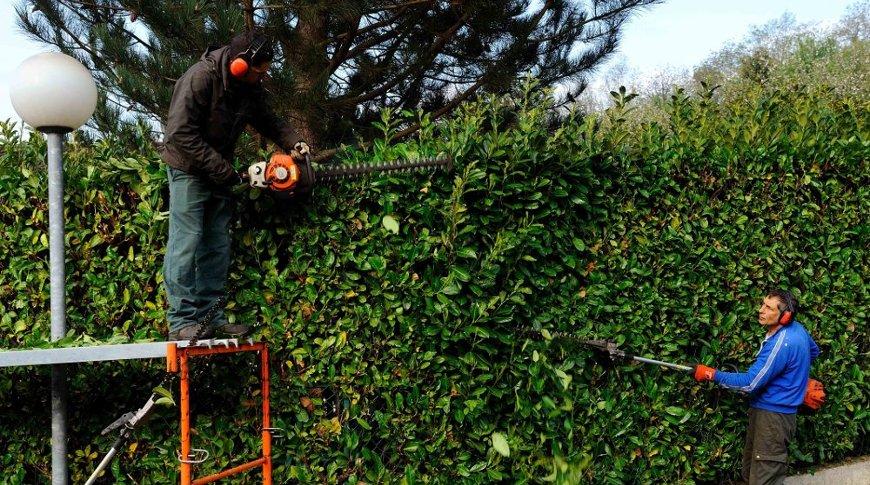 Le jardinage à domicile c'est pratique !